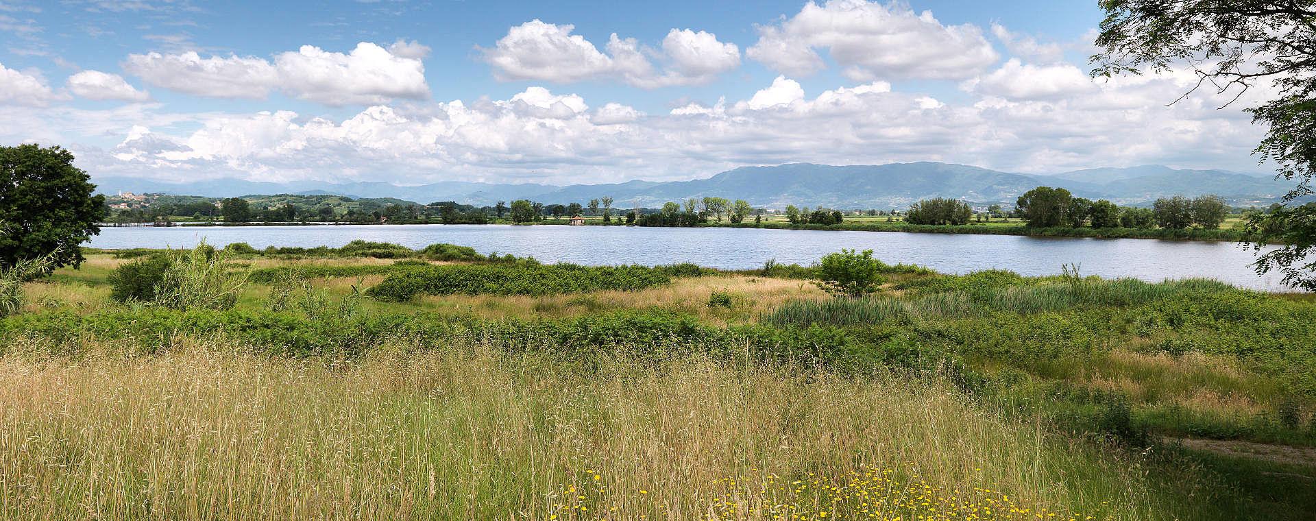 Vista lago della Gherardesca - Capannori